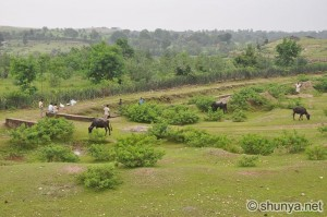Manpur village countryside